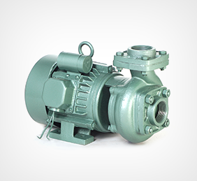 Centrifugal Pump - Centrifugal End Suction Monoblok