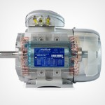 Motive Delphi Asynchronous 3PH Electric Motor